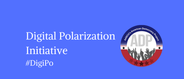 Digital Polarization Initiative Banner
